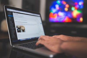 freshestweb wordpress webseite leistung